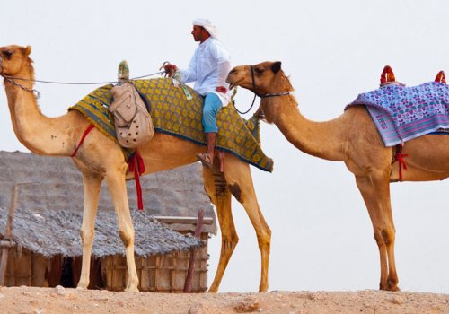 Allgemeine Infos zu Dubai